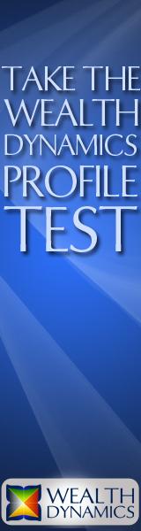 wealth dynamics profile test - take the test