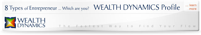 8 types of entrepreneurs - wealth dynamics profile test